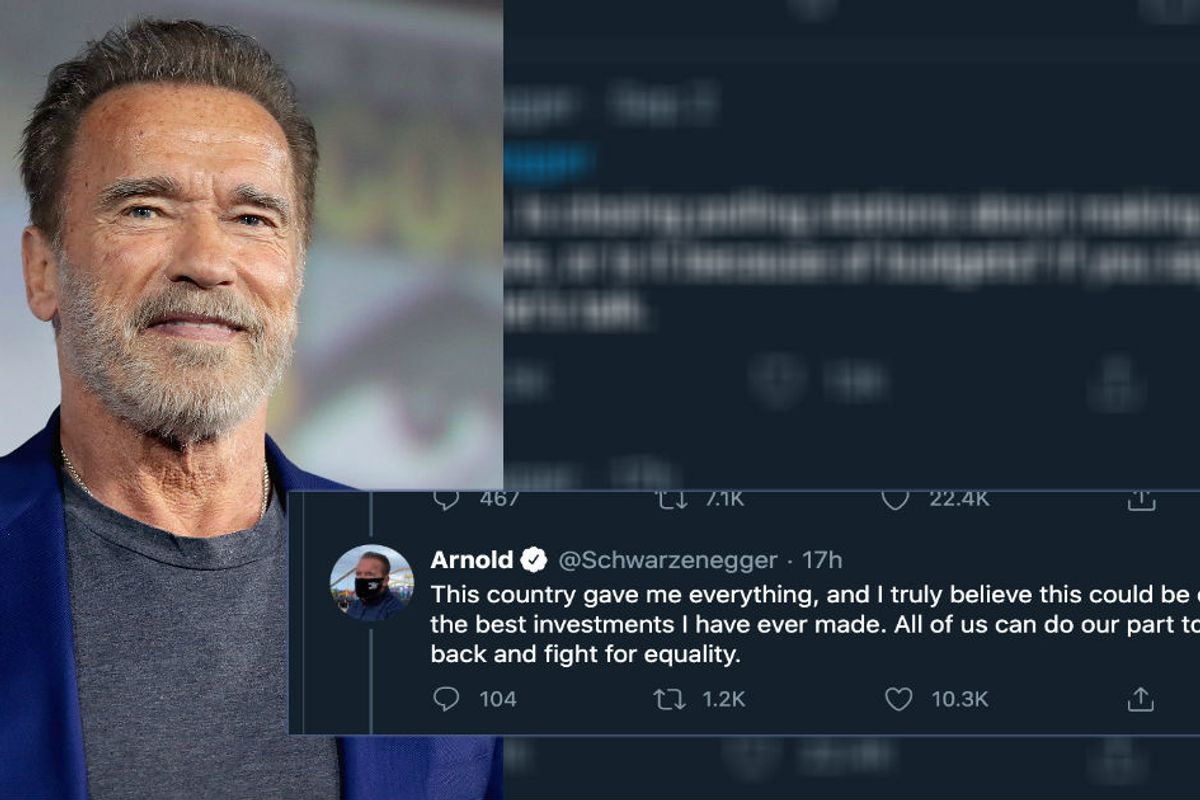 Arnold Schwarzenegger says he'll pay to reopen polling centers across America so everyone can vote