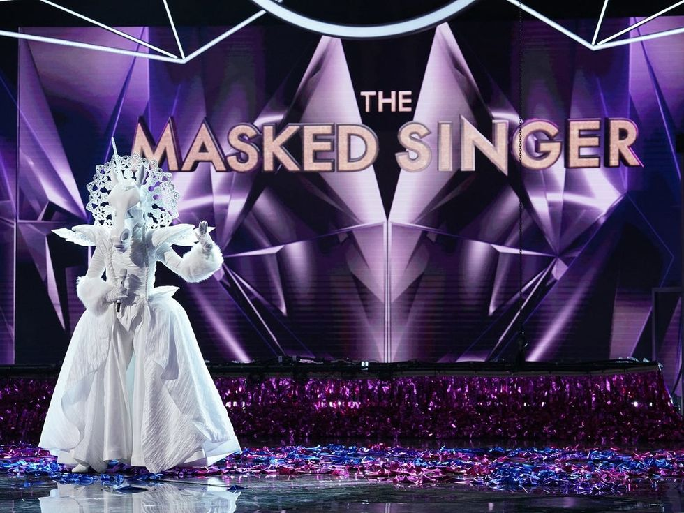 Did you Unmask the Singer?