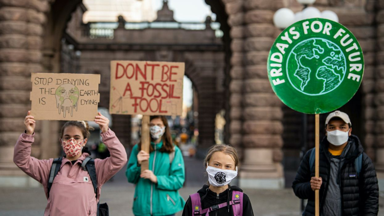 Fridays for Future Climate Strikers Are Back on the Streets