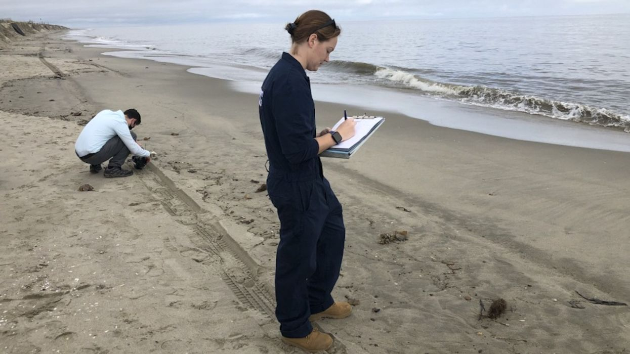 Mysterious Oil Spill Spreads Along 11 Miles of Delaware Beach