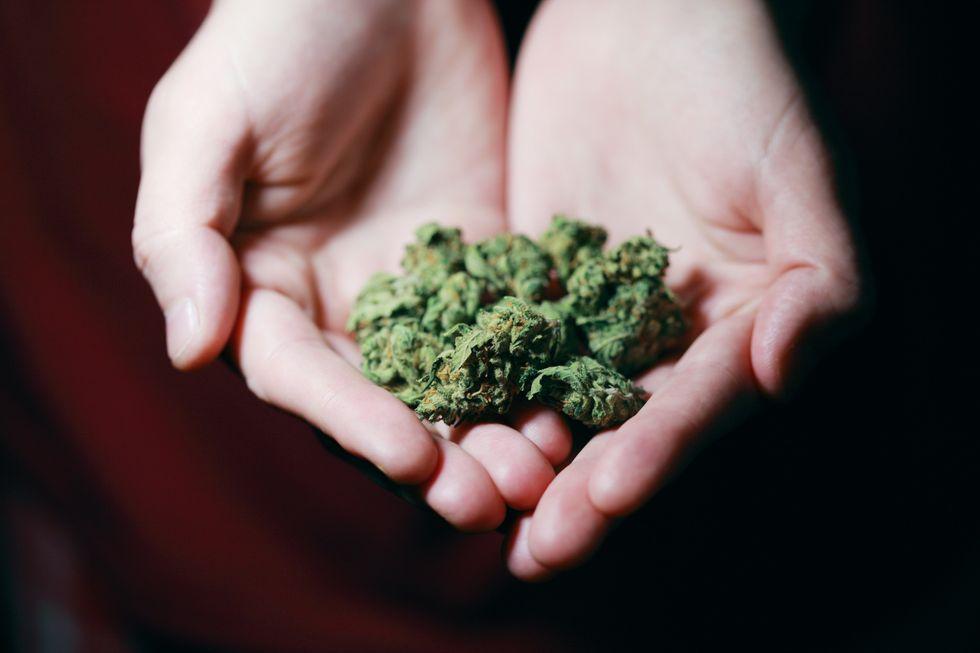 The Healing Green: Benefits of Medicinal Cannabis