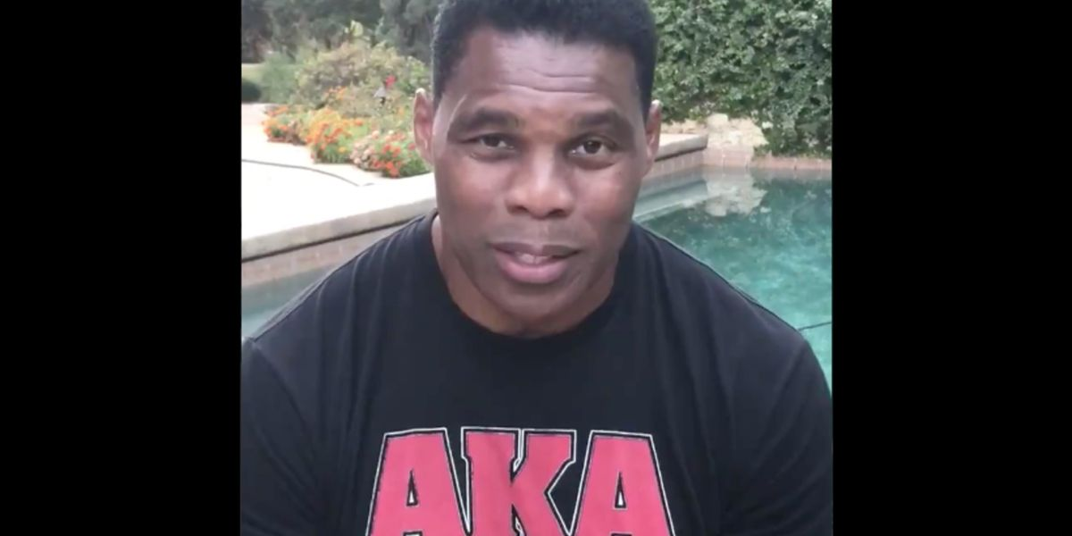 Herschel Walker shreds celebrities, athletes saying black people are oppressed: 'I'm here to tell you, you're not'