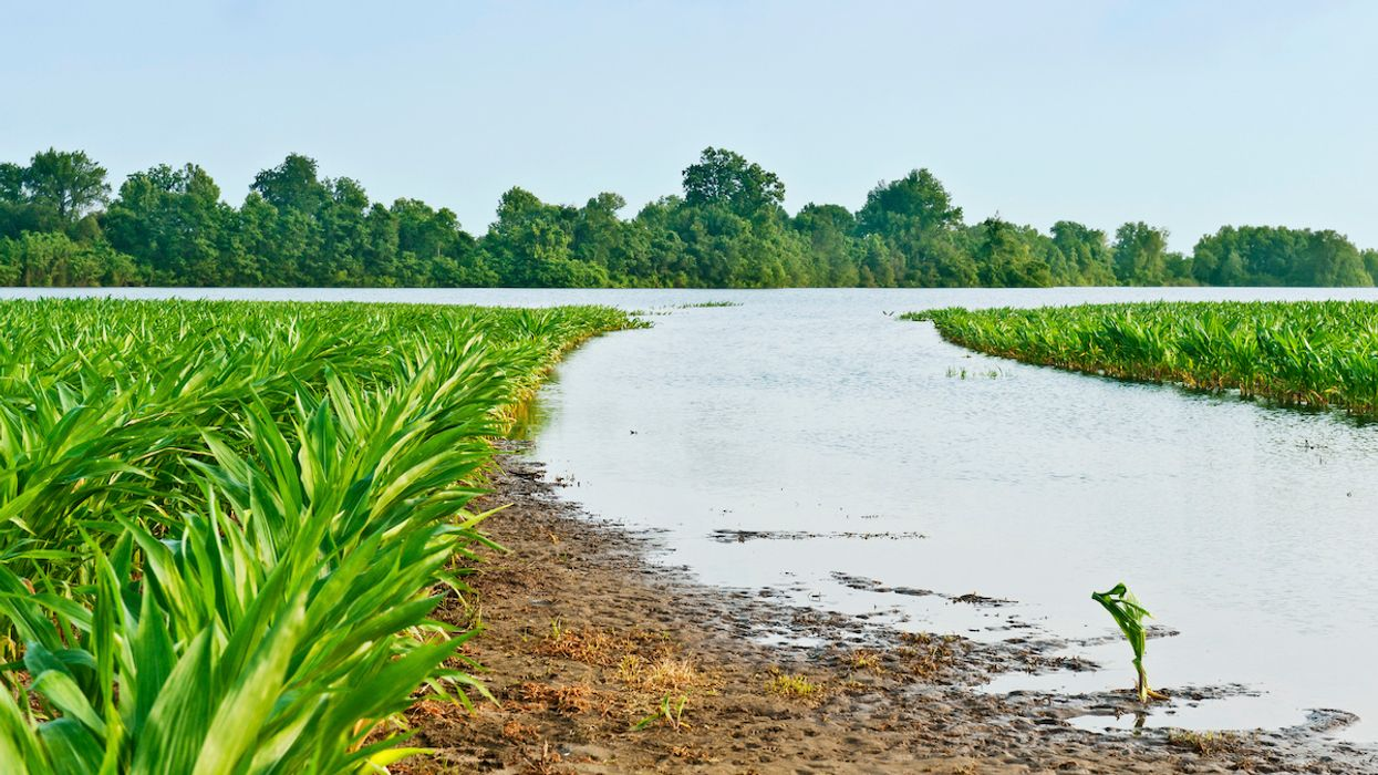 A Few Heavy Storms Cause a Big Chunk of Nitrogen Pollution From Midwest Farms