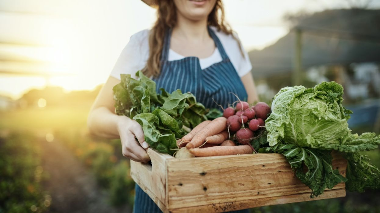 What Are the Implications of the Election Results on the Food Movement?