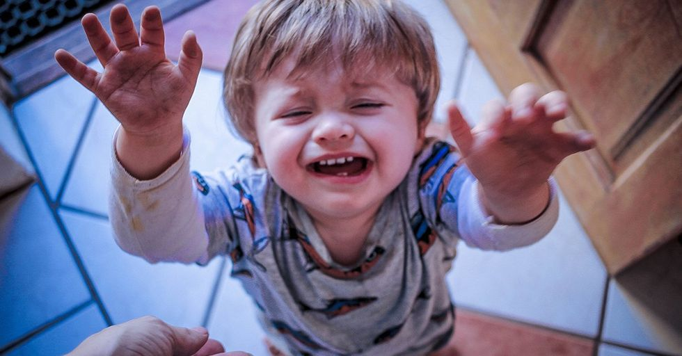Toddlers That Throw Huge Tantrums Could Grow up to Be Wealthy Adults