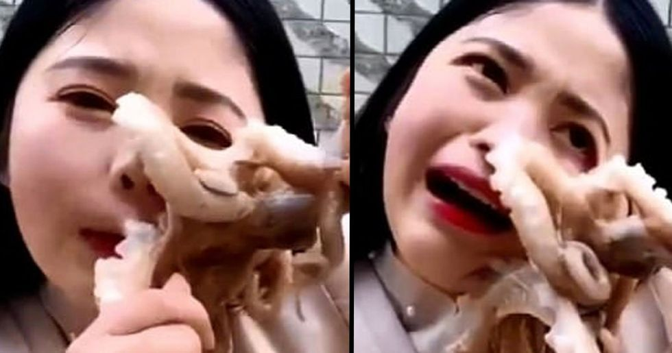 Octopus Sucks Onto Woman's Face as She Tries to Eat It Alive