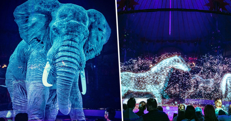 Circus in Germany Uses Holograms Instead of Animals to Stop Mistreatment