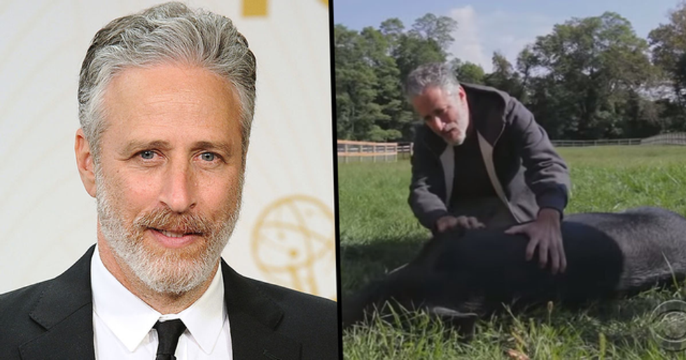 Jon Stewart's 12-Acre Farm Is a Safe Haven for Abused Animals