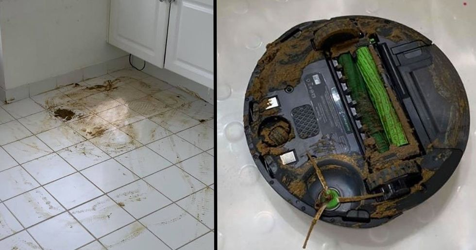 Guy's Roomba Runs Over Dog Poo, Spreads It All Over His House