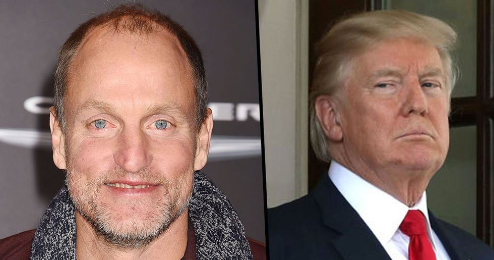Woody Harrelson Had To Get High To Survive 'Brutal Dinner' With Donald Trump