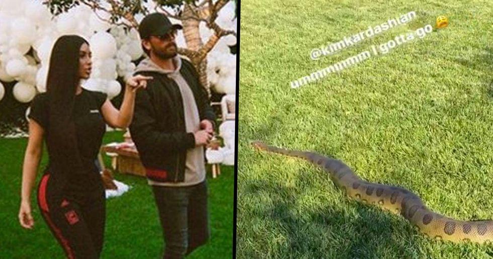 Kim Kardashian Finds 10-Foot Anaconda In Back Yard