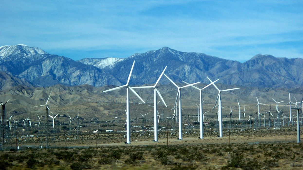 As U.S. Election Nears, Polling Shows 82 Percent of Voters Support 100 Percent Clean Energy Transition