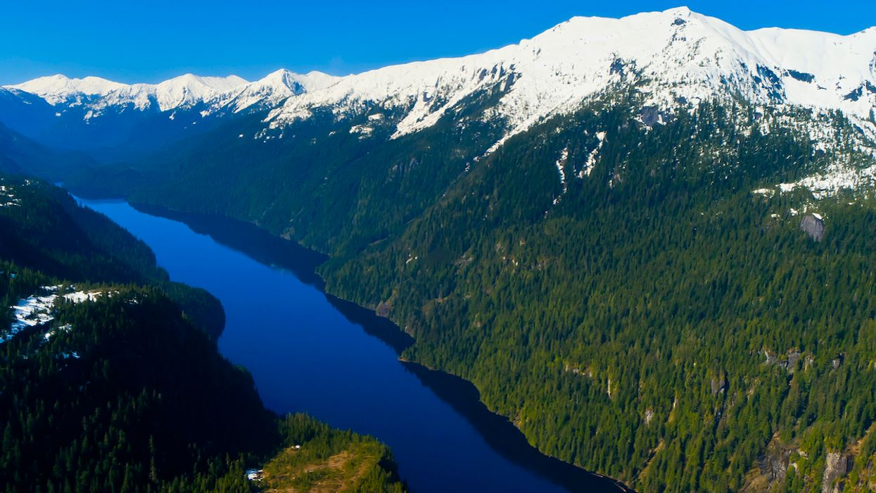 Trump to Remove Protections for Tongass National Forest, the 'Lungs of North America'