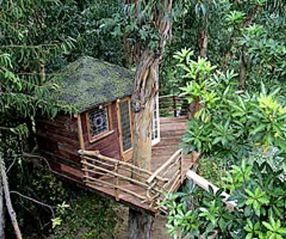 A Treehouse Grows in LA