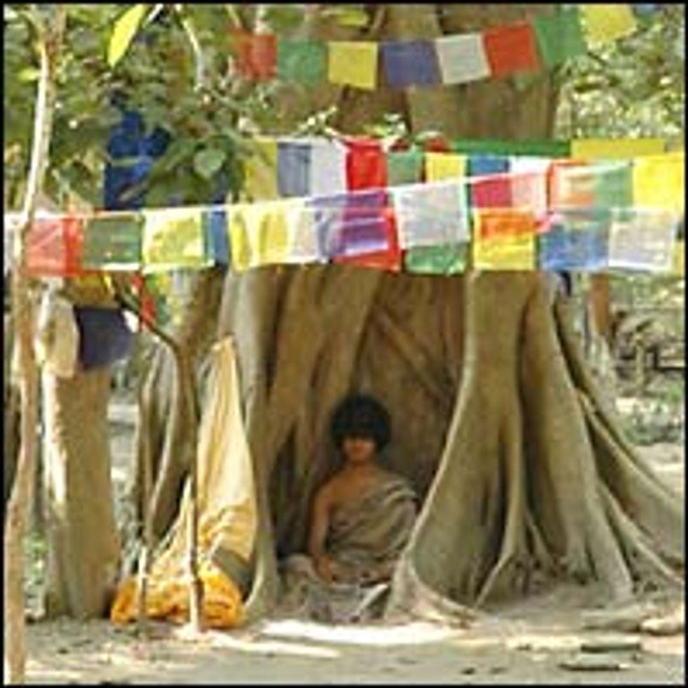 Does Meditation Work II -- Ask the Buddha Boy