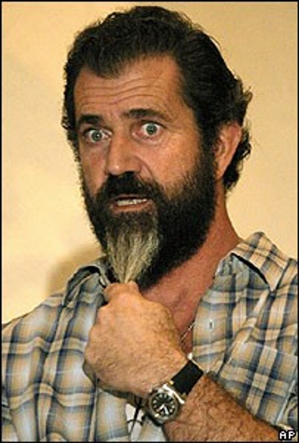 Message to Mel Gibson: Jews Do Rule the World