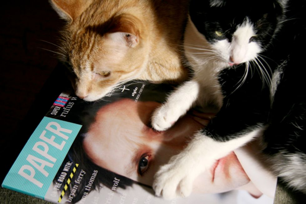 Pets on PAPER: Meet Simon and Sonjia