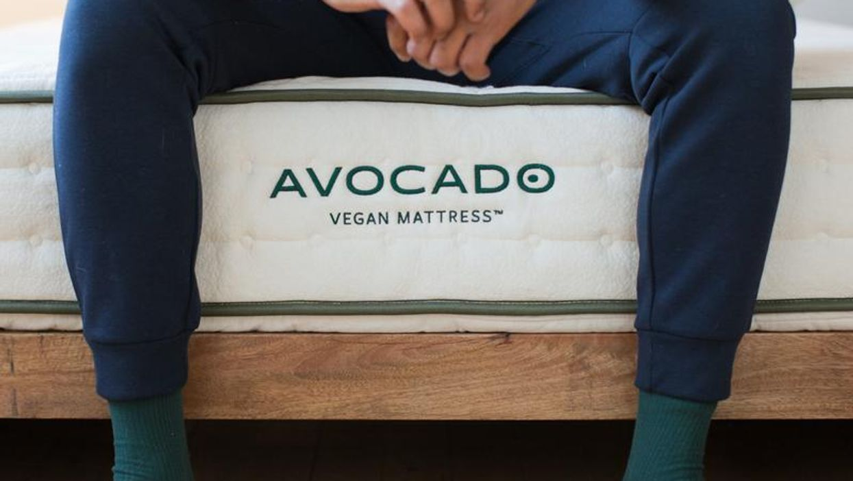 Why Sleep Organic? An Avocado Mattress Review