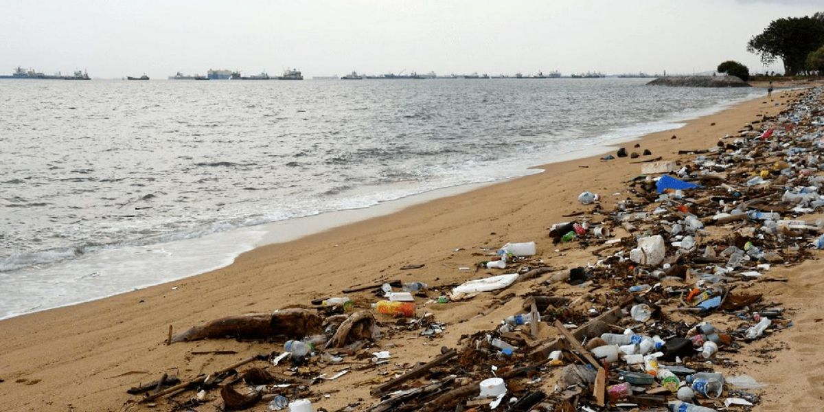5 Things to Know About Plastic Pollution and How to Stop It
