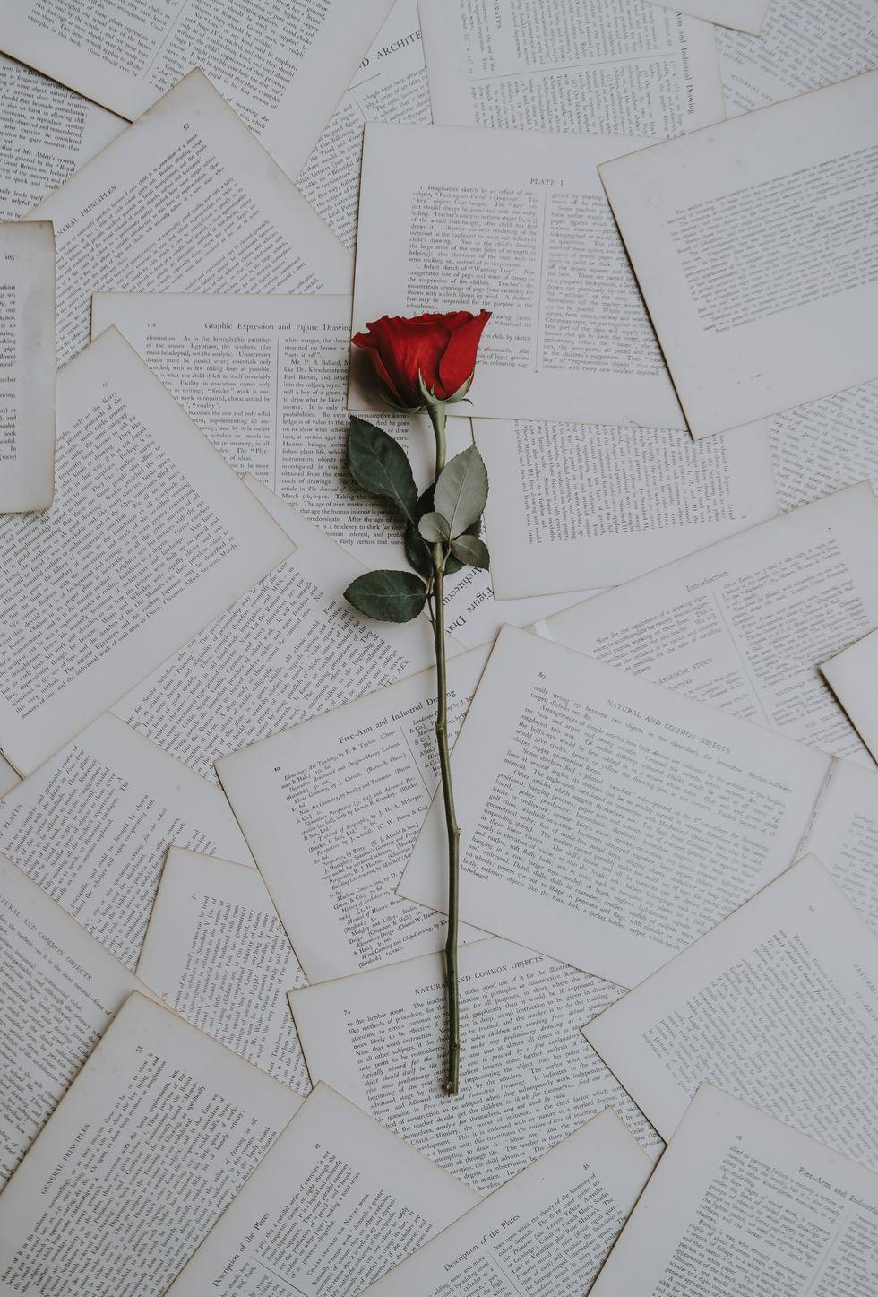 Poetry On Odyssey: Fallin'