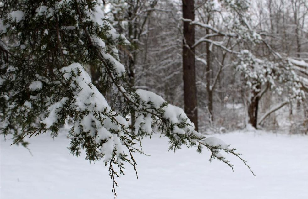 9 Reasons Winter Is Totally Overrated And Any Season Is Better