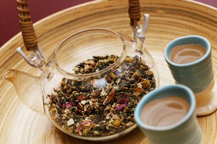 dr oz fogyókúrás tea)