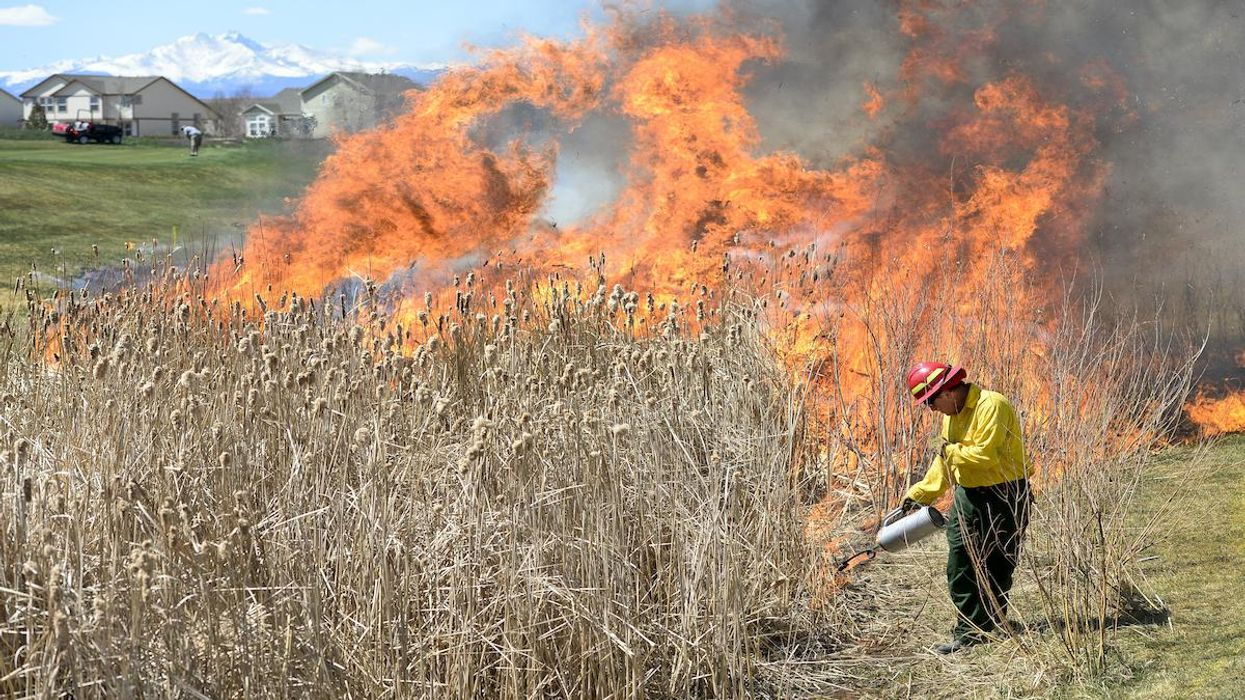 Federal Wildfire Responses Subject to Racism, Economic Disparities, Study Finds