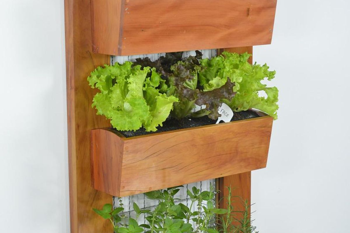 A vertical garden is the gift that keeps on giving