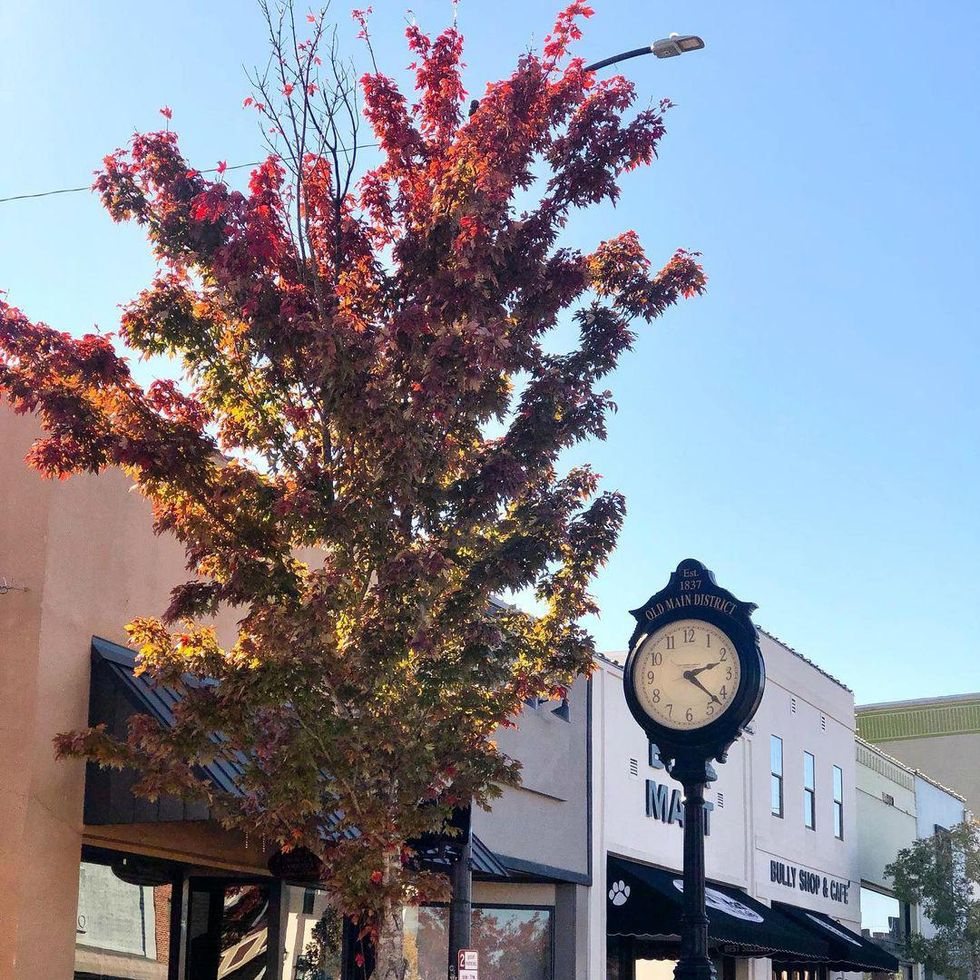 7 Local Starkville, MS Businesses You Can Support This Holiday Season