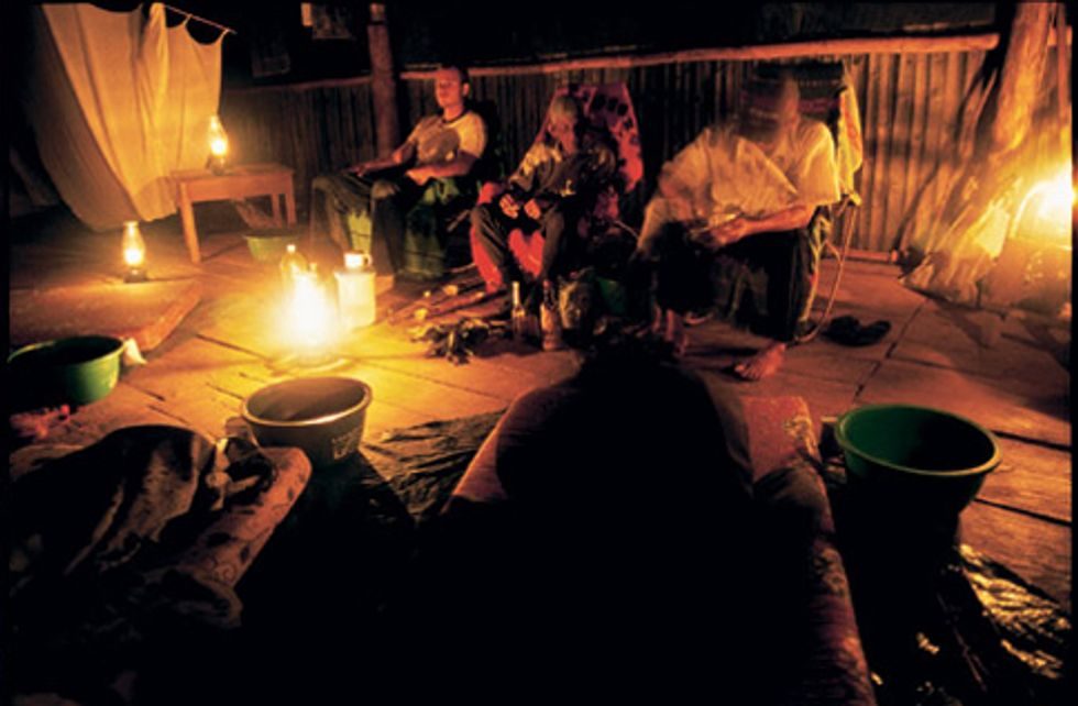 Ayahuasca, The Strange South American Brew to the Stars!