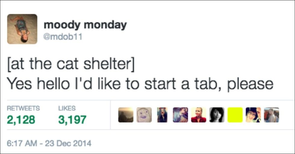 Hilarious Tweets That Speak To the Soul of Every Animal Lover