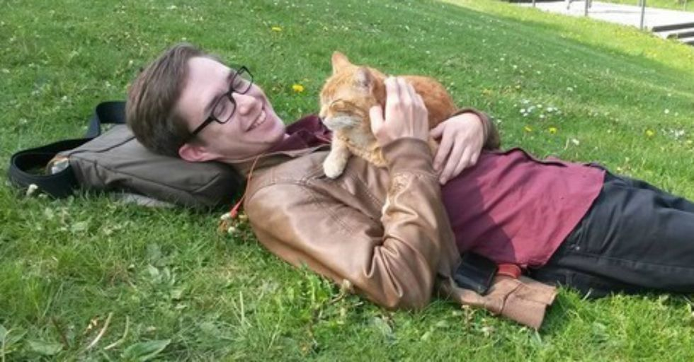 'Campus Cat' Visits Students Every Day To Help Them Relax and Share Cuddles