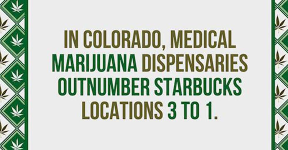 24 Crazy Facts About Marijuana That Will Fascinate People On Both Sides of the Issue