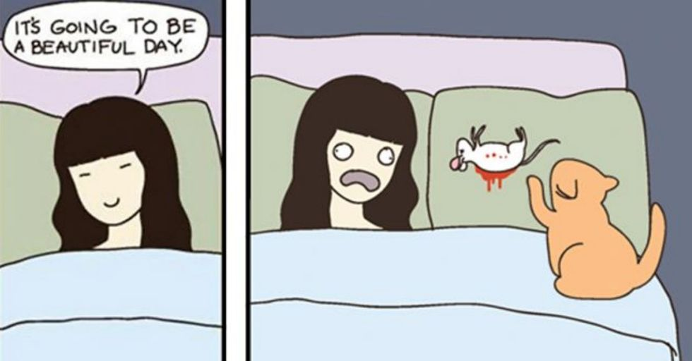 These Comics Purr-fectly Demonstrate That Cats Are Delightfully Evil Little Furballs