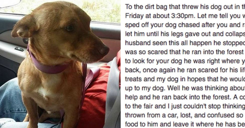 This Facebook Post To the 'Dirtbag' Who Dumped a Dog From His Truck Will Infuriate You