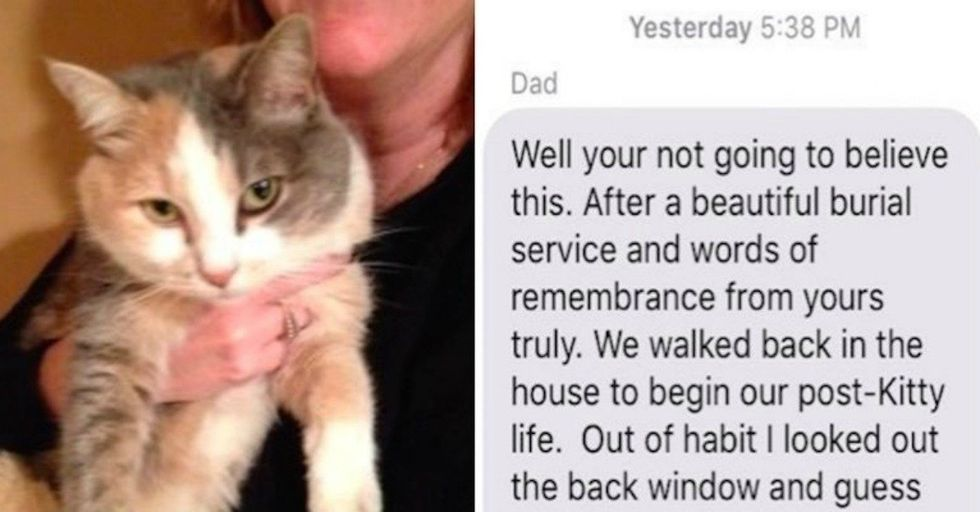 Family's Group Text About Their Cat's Death Has Absurdly Hilarious Twist