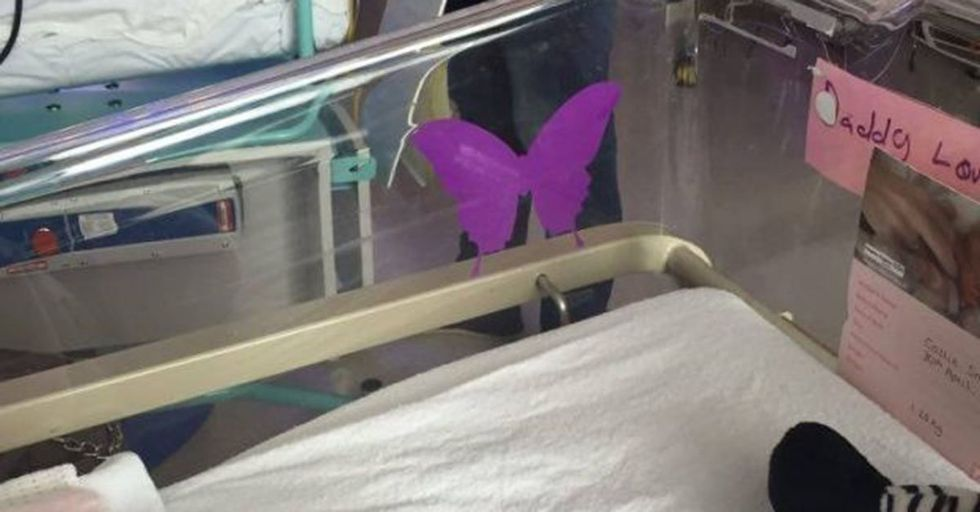 If You See a Purple Butterfly On a Baby's Crib, Make Sure You Know What It Means...
