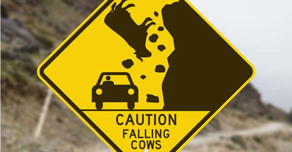 12 Ridiculous Road Signs You'll Have To See To Believe!