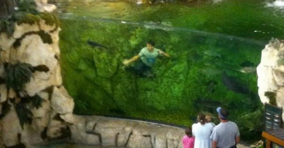 This Kid Jumped Into a Bass Pro Shops Fish Tank, Apparently Taking Part In an Age-Old Tradition
