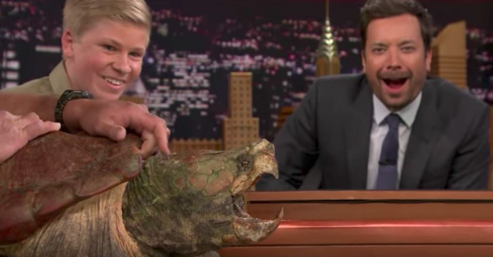 The Crocodile Hunter's Son Is Back For Another Jimmy Fallon Appearance