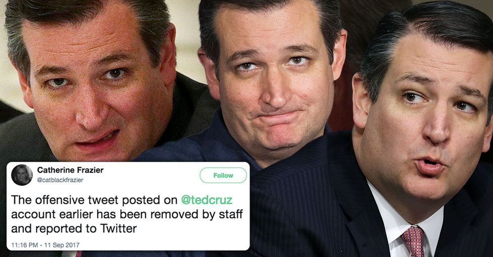 Ted Cruz Just Used Twitter to Let the Entire World Know He Likes Infidelity Porn