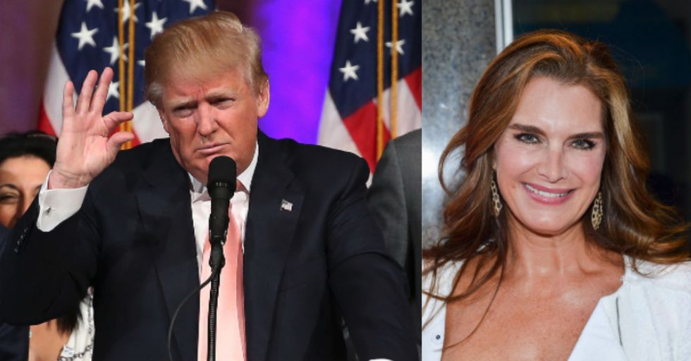 Trump Tried to Hook up with Brooke Shields with This Pathetic Pickup Line
