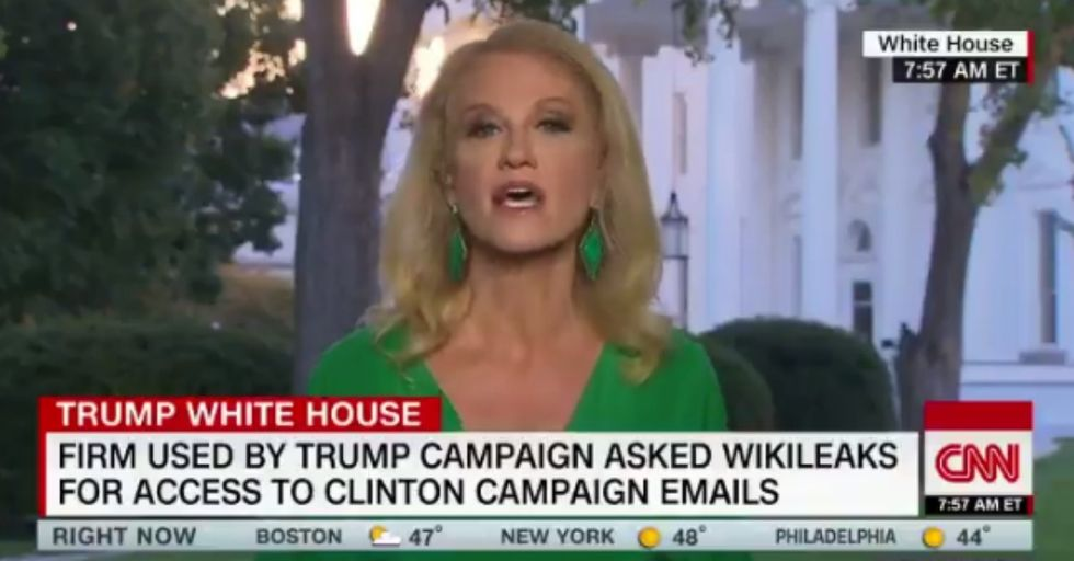Kellyanne Conway Just Interrupted a TV Interview to Greet a Squirrel