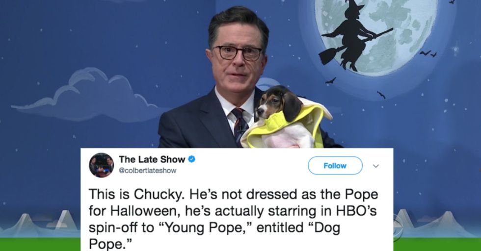 Stephen Colbert Is Dressing up Rescue Dogs for Halloween to Help Them Get Adopted