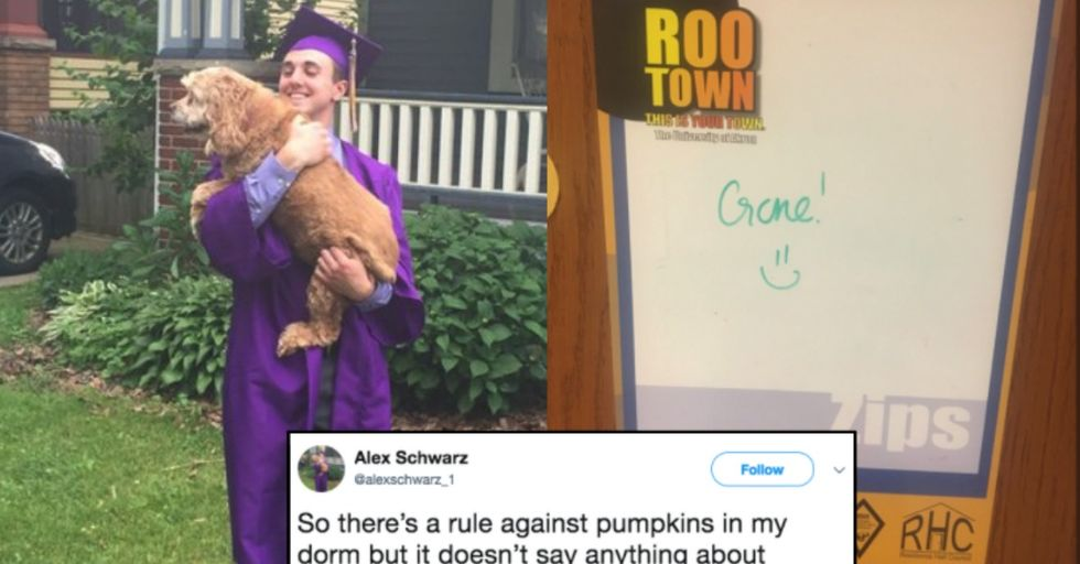 This Student's Unique Halloween Jack-O-Lantern Went Viral After He Hilariously Bent the Rules