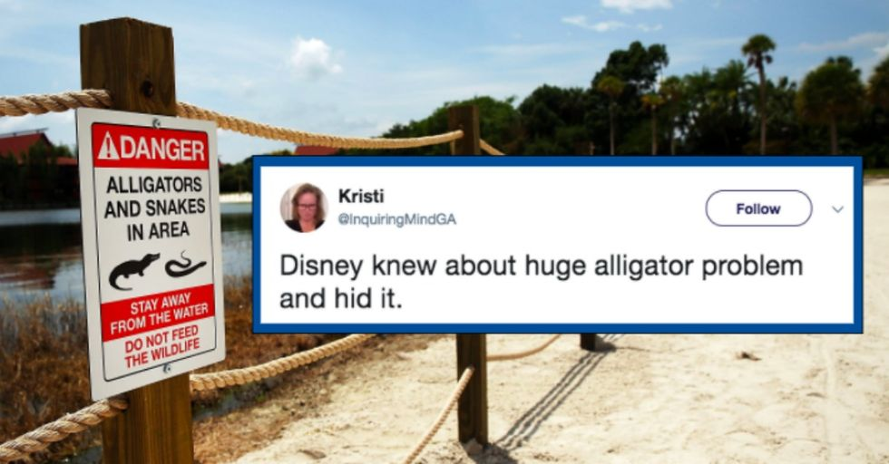 This New Report Confirms Disney World Knew They Had an Alligator Problem Long Before Fatal Attack of 2-Year-Old Boy