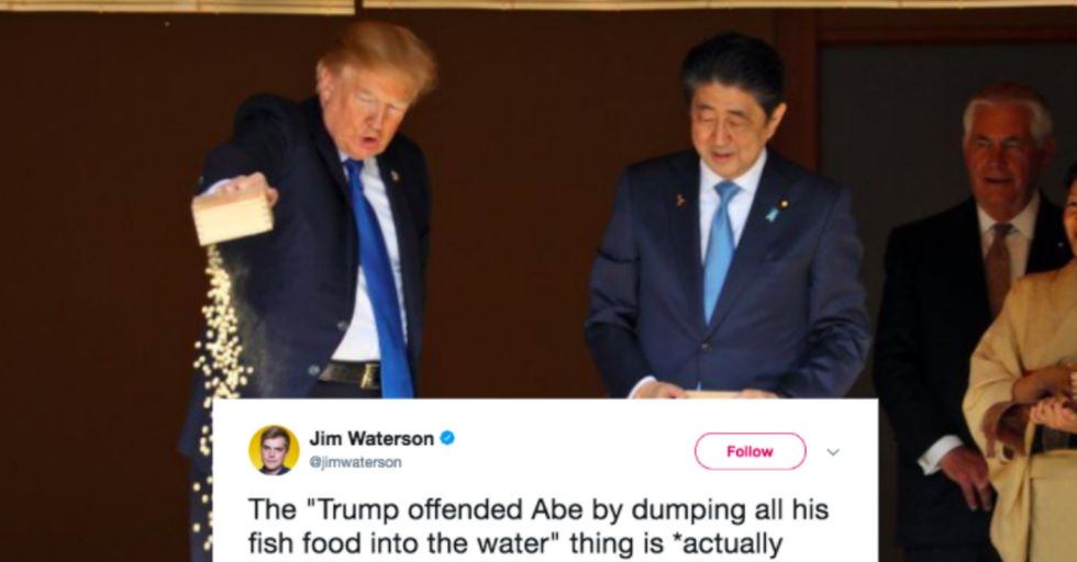 Trump Dumping Fish Food in a Koi Pond Outraged the Internet, but Is It 'Fake News'?