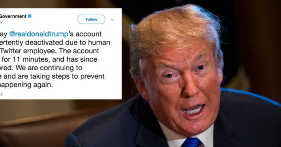 Trump's Twitter Account Was Deactivated by a Rogue Twitter Employee on Last Day of Job