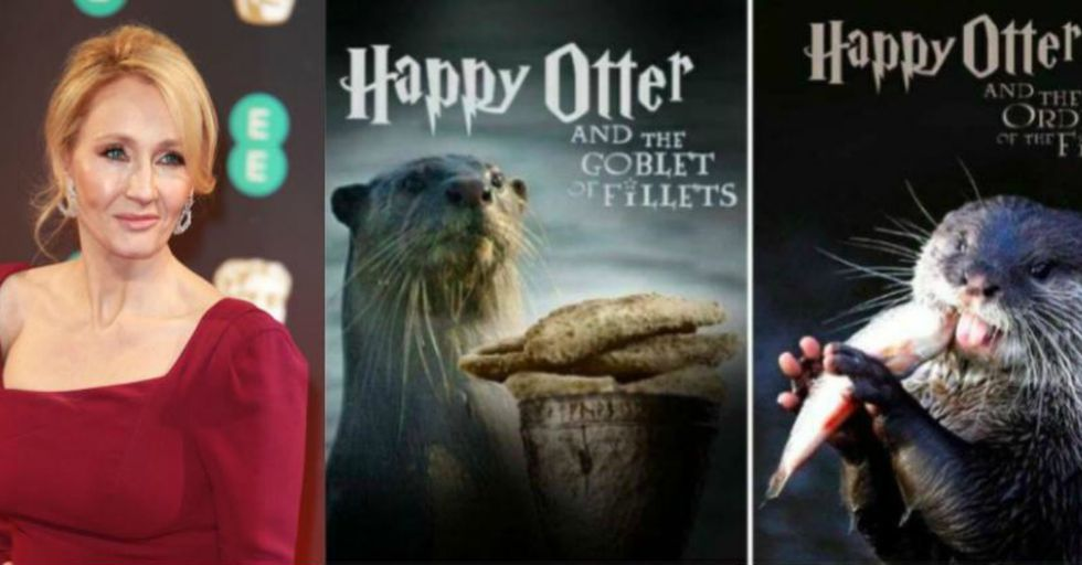 This Is What Happened When J.K. Rowling Asked Twitter for Pictures of Otters on a Bad Day