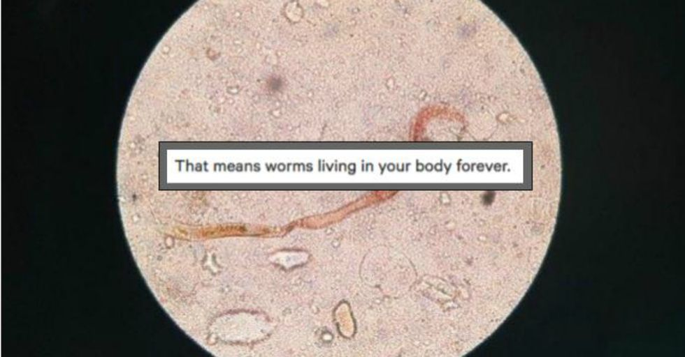 Through a Hilarious Series of Question, Reddit Helped This Guy Figure Out He May Have Contracted a Parasite
